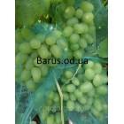 Сетка мешок   от ОС  и ПТИЦ  для винограда на 2 кг