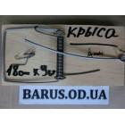 Крысоловка деревянная 180*90 мм Украина